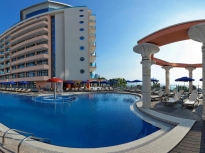 ASTERA GOLDEN SANDS 4 *
